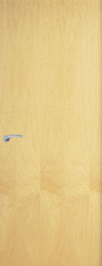 Ash Flush Veneer Fire Door