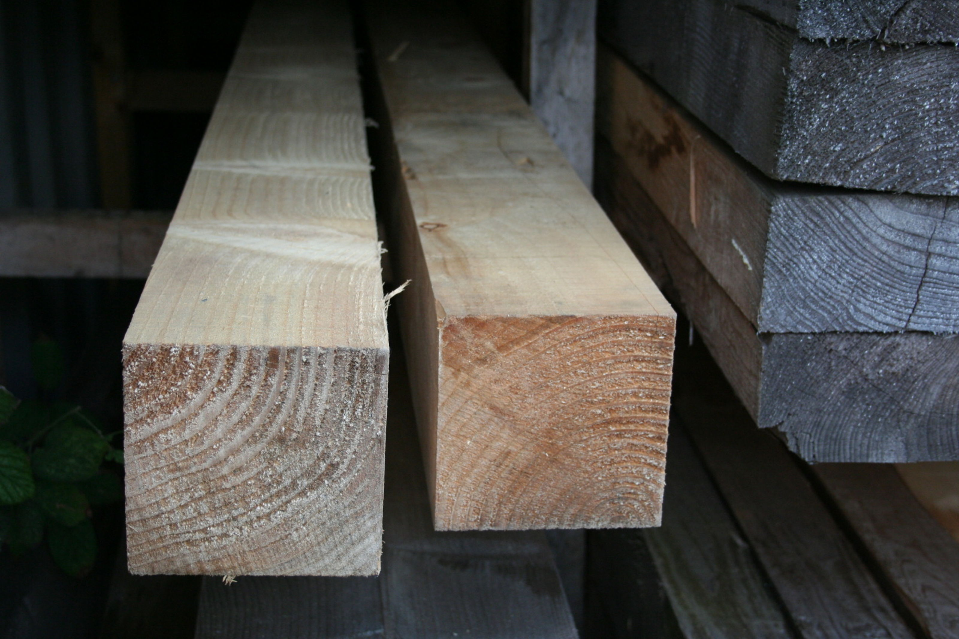 100mm x 100mm Sawn Treated Timber - end section; Image 7330
