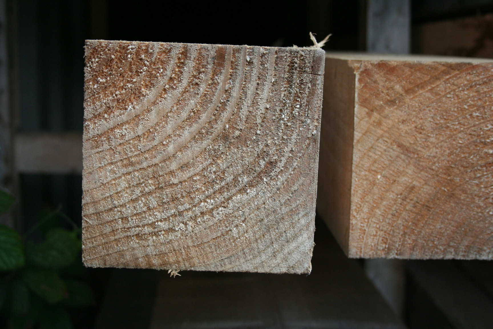 50mm x 50mm Square Planed Softwood; Image 7329