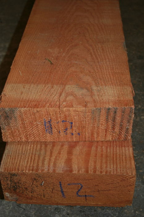 IMG 2089 Pitch Pine