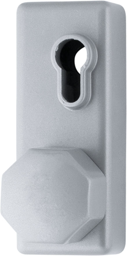 AR886K-SE Arrone® Silver Fire Door Eurolock case with Knob