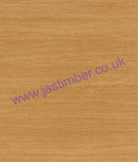 Sherwood Oak - PP6785 MAT - Matte58