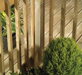 American Softwood Spindles
